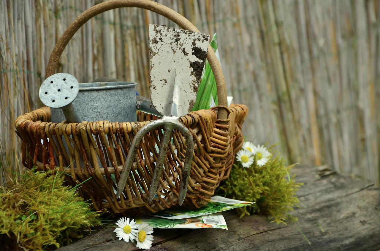 Your Essential Gardening Equipment List - 12 Basic Garden Tools For Summer