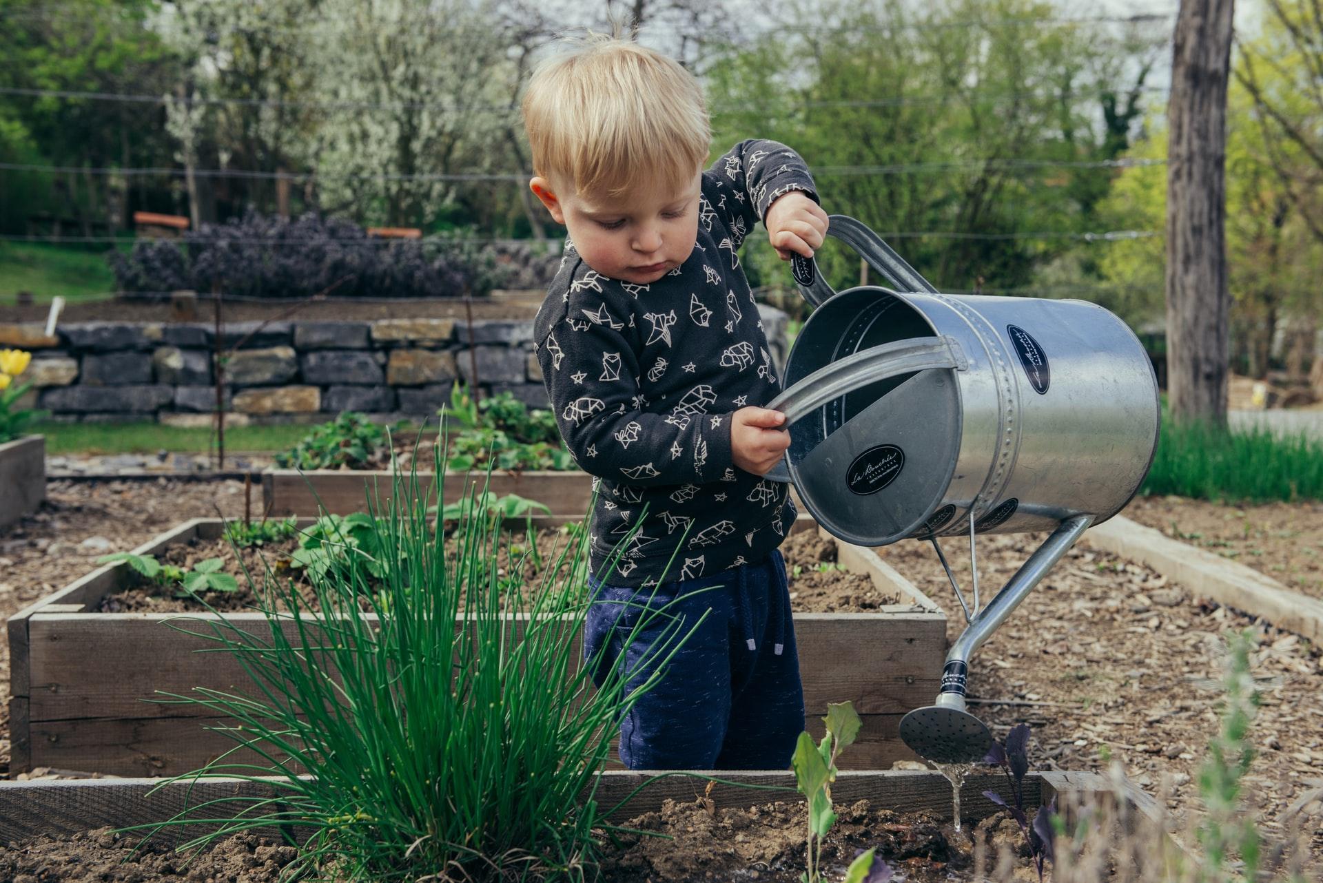 10 DIY Gardening Tips for Beginners
