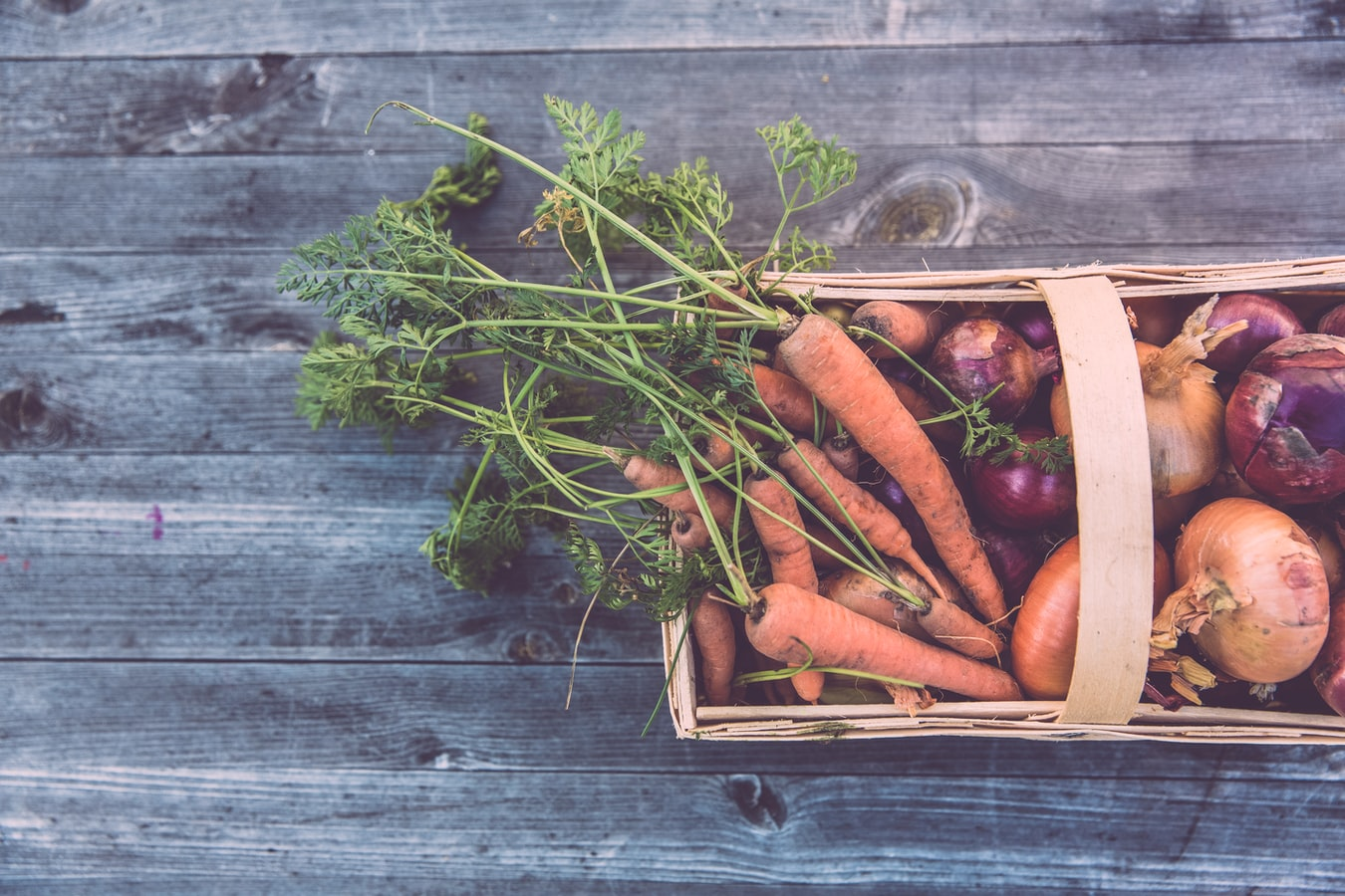 Growing Winter Vegetables: A Guide to Planting In Winter