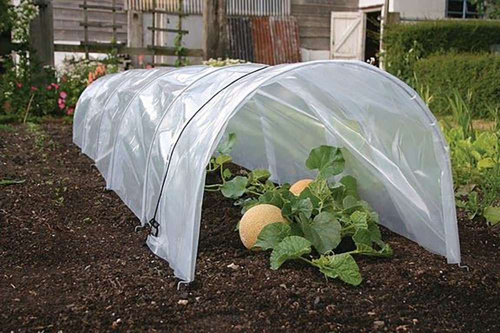 Crop & Plant Protection
