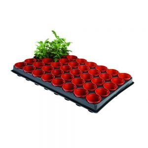professional seed and cutting tray