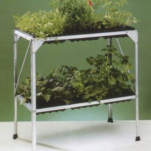 Seed tray stand