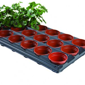 Potting Tray with Plants