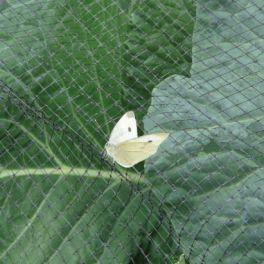 Image for Heavy Duty Butterfly Netting