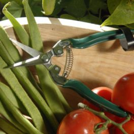 Image for Fruit & Veg Snip