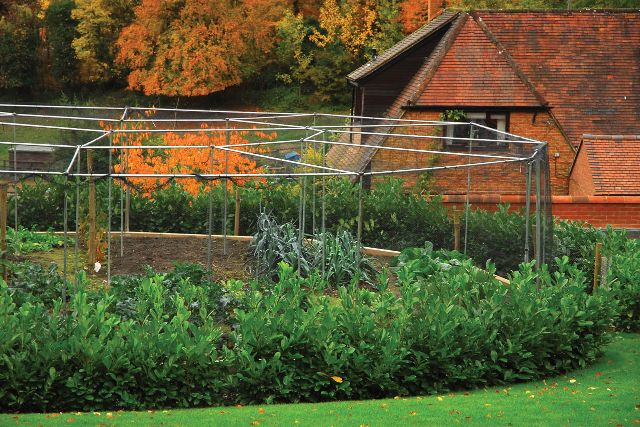 Bespoke Cage, Private Residence Butlers Cross, Buckinghamshire