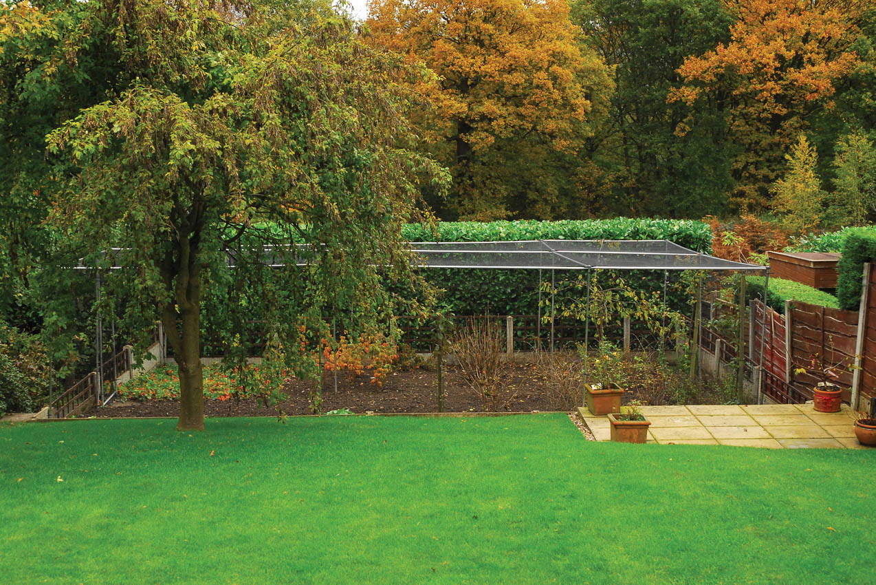 Premium Aluminium Fruit Cage, Private Residence, Stockport