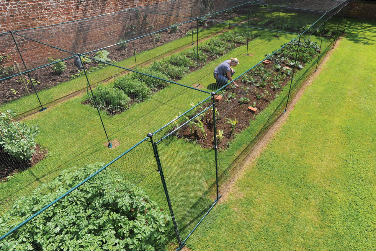 23.1 x 5.5m Classic Steel Fruit Cage, Private Residence Staffordshire