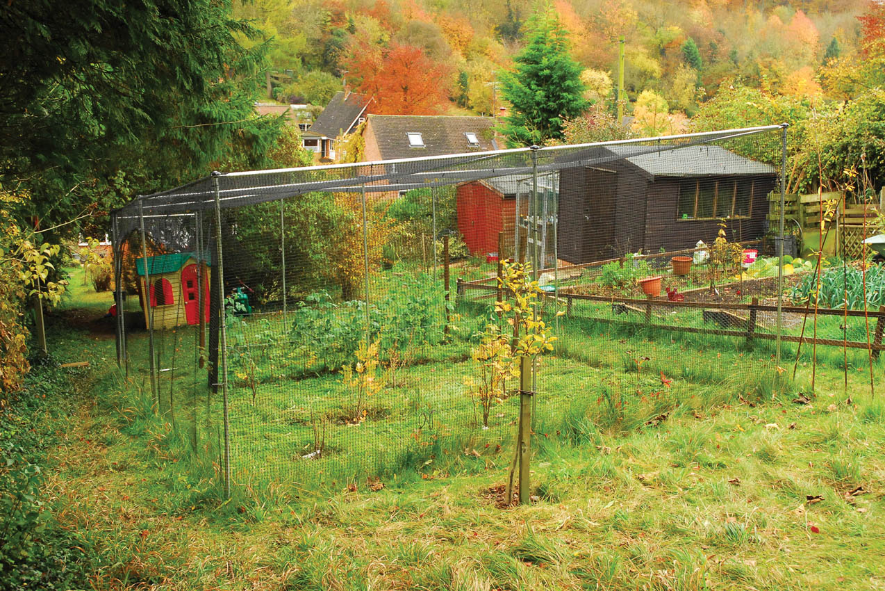Premium Aluminium Fruit Cage, Private Residence Prestwood, Buckinghamshire
