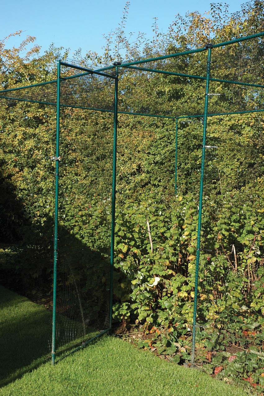 Classic Steel Fruit Cage Door