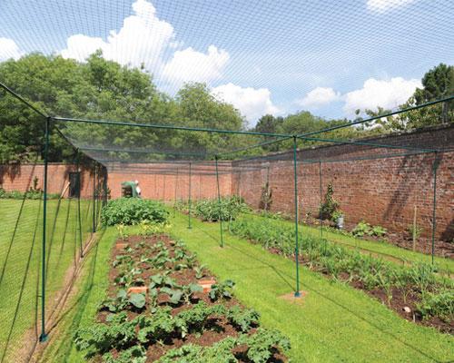 kitchen garden fruit cage